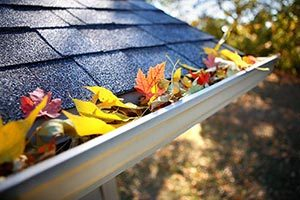 Gutter Cleaning Service Knoxville TN